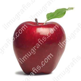 image ilmugrafis.com